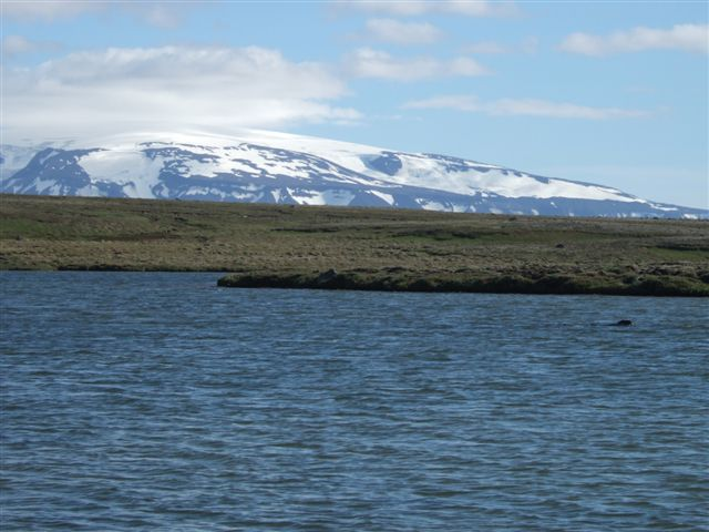 Arnarvatn Stóra