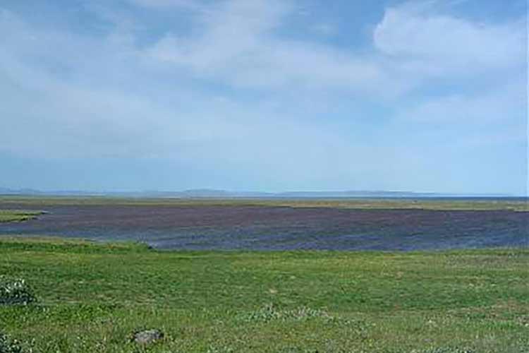 Hlíðarvatn Langanesi