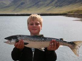Hraunfjörður