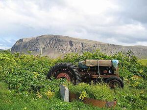 Reykjafjörður