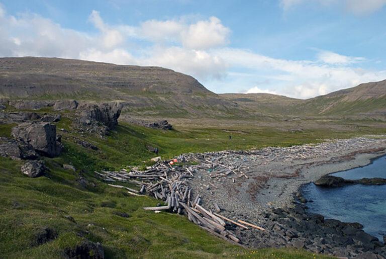 Skjaldbjarnarvík