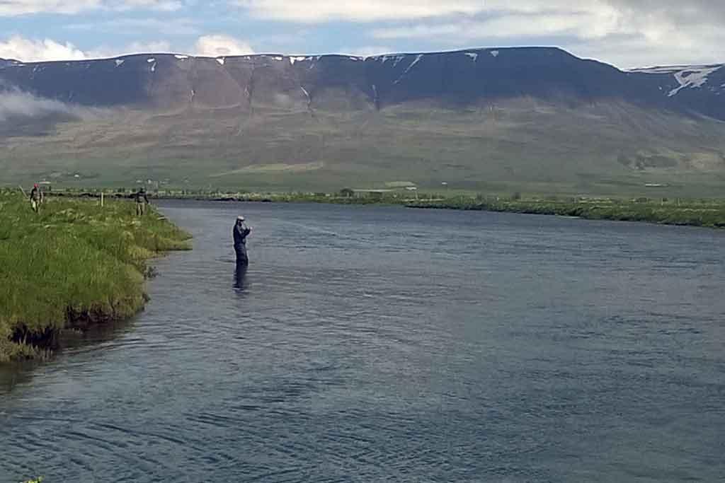Veiði á Íslandi